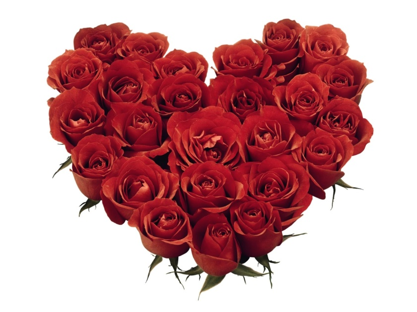 Red Roses Heart-839609